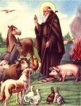 anthony-abbot